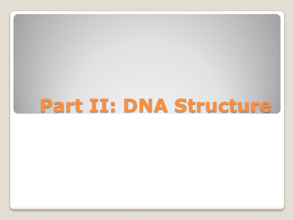 Part II: DNA Structure