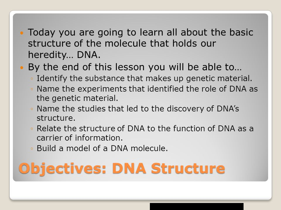 Objectives: DNA Structure Today you are going to learn all about the basic structure of the molecule that holds our heredity… DNA.