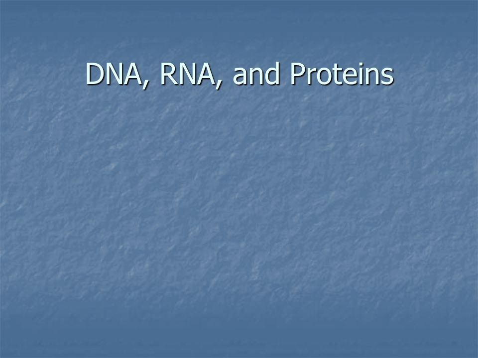 An Overview of Gene Expression, continued Gene expression produces proteins by transcription and translation.