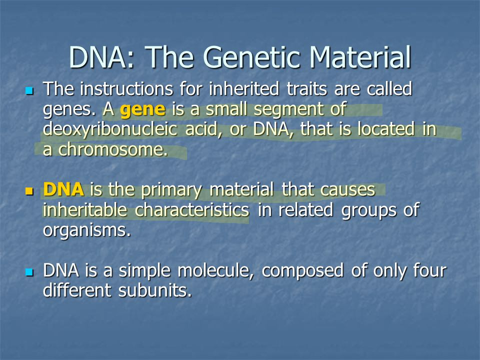 Complexities of Gene Expression The relationship between genes and their effects is complex.