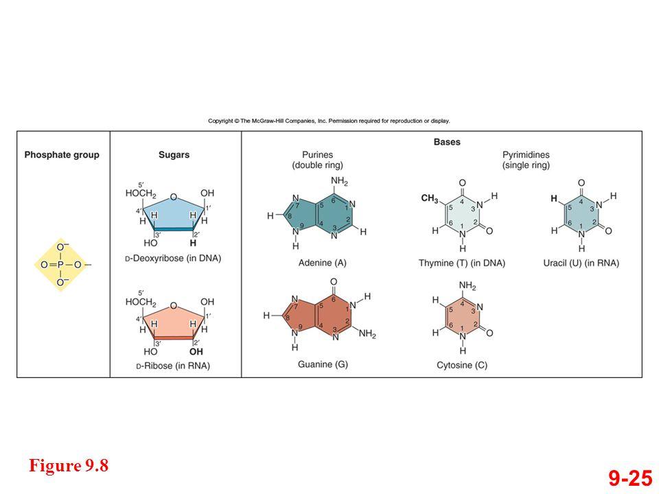 9-25 Figure 9.8