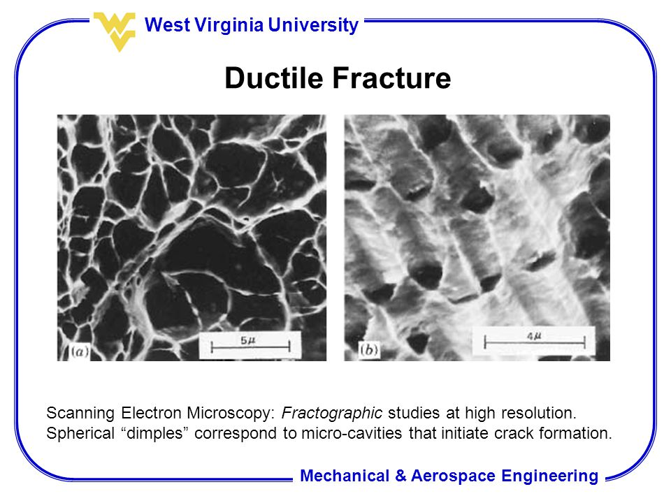 Mechanical & Aerospace Engineering West Virginia University Ductile Fracture Scanning Electron Microscopy: Fractographic studies at high resolution. S