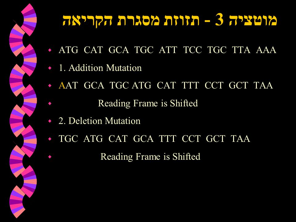 מוטציה 3 - תזוזת מסגרת הקריאה w ATG CAT GCA TGC ATT TCC TGC TTA AAA w 1. Addition Mutation w AAT GCA TGC ATG CAT TTT CCT GCT TAA w Reading Frame is Sh