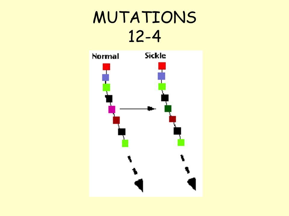 MUTATIONS 12-4