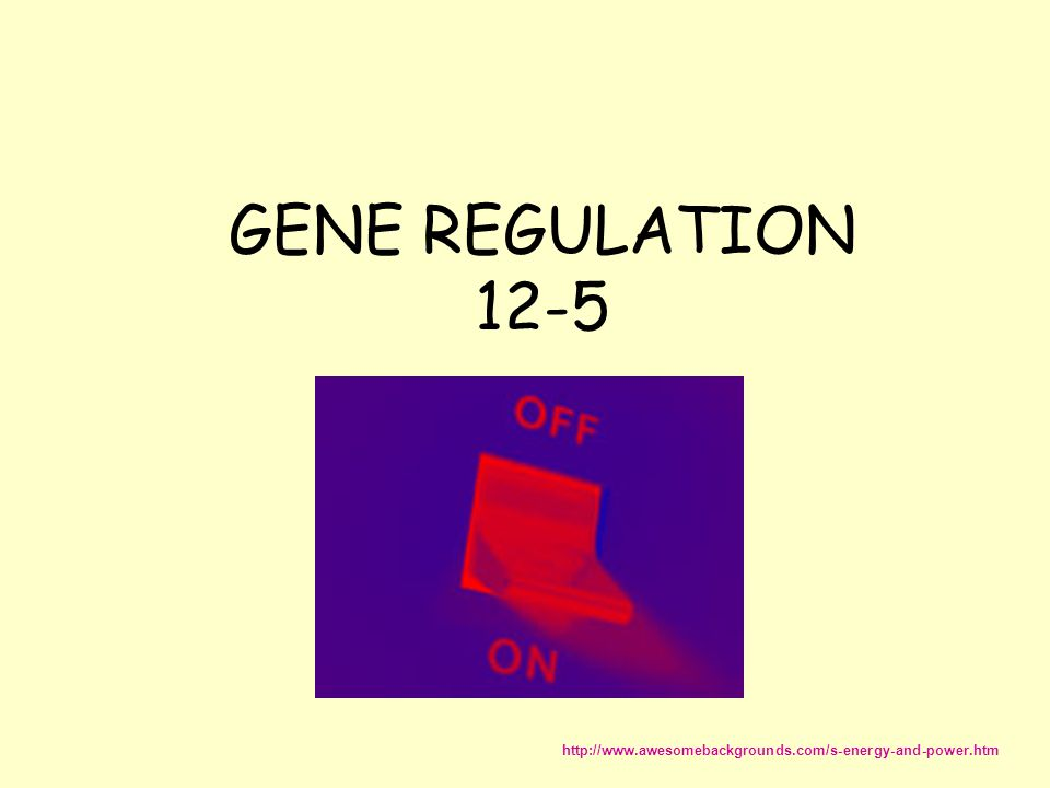 GENE REGULATION 12-5 http://www.awesomebackgrounds.com/s-energy-and-power.htm