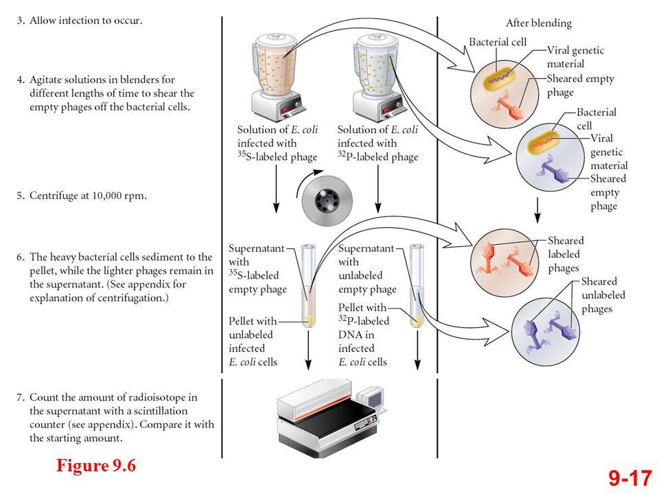 9-17 Figure 9.6