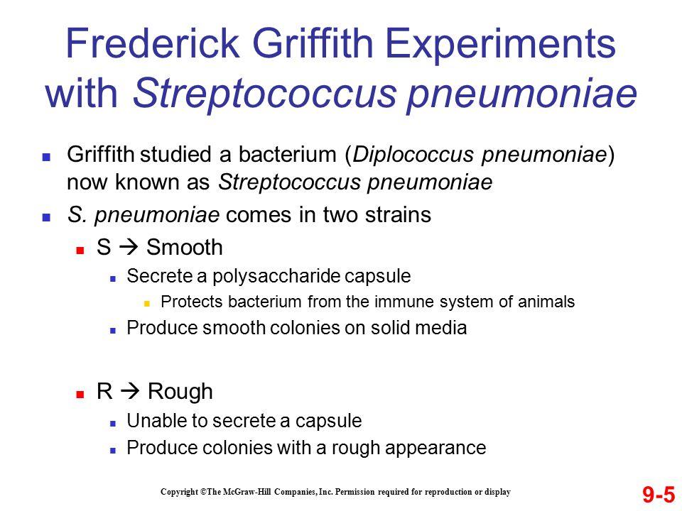 Griffith studied a bacterium (Diplococcus pneumoniae) now known as Streptococcus pneumoniae S.
