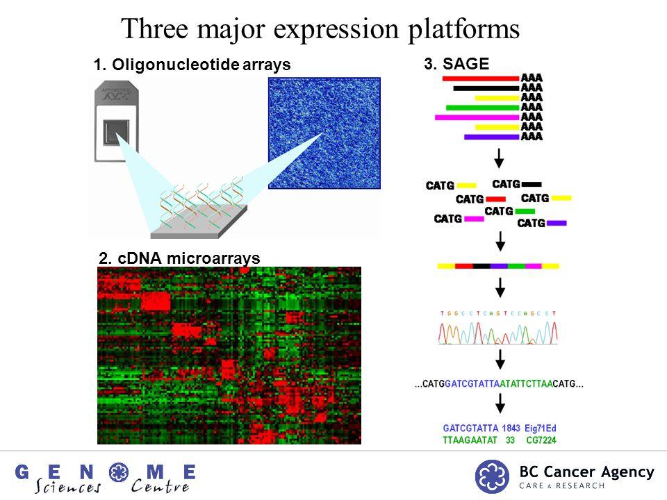 1. Oligonucleotide arrays 3. SAGE 2. cDNA microarrays Three major expression platforms