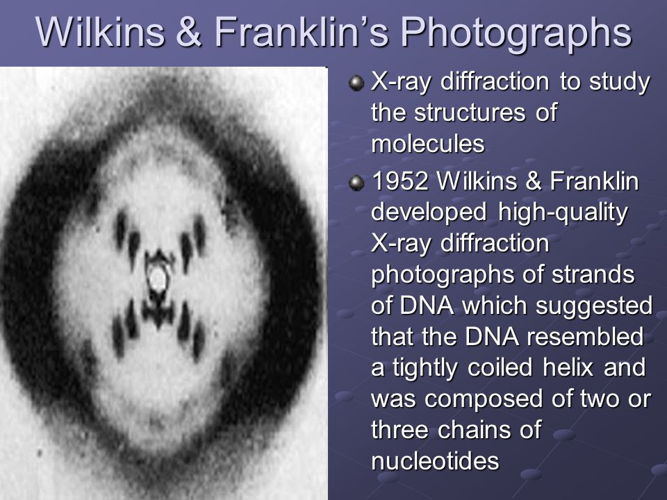 Wilkins & Franklin's Photographs X-ray diffraction to study the structures of molecules 1952 Wilkins & Franklin developed high-quality X-ray diffracti