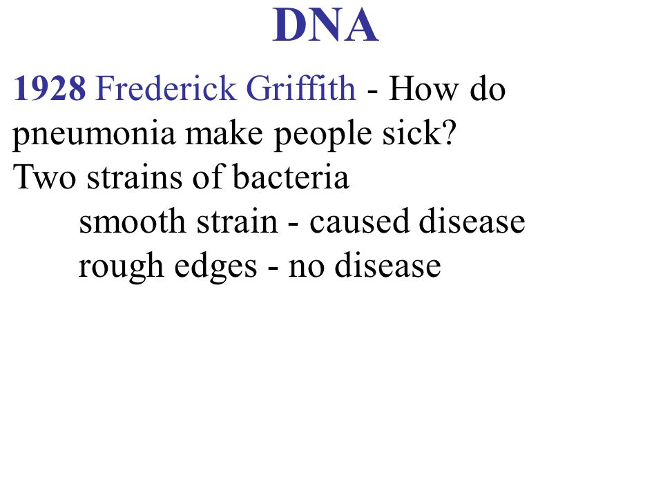 DNA 1928 Frederick Griffith - How do pneumonia make people sick? Two strains of bacteria smooth strain - caused disease rough edges - no disease