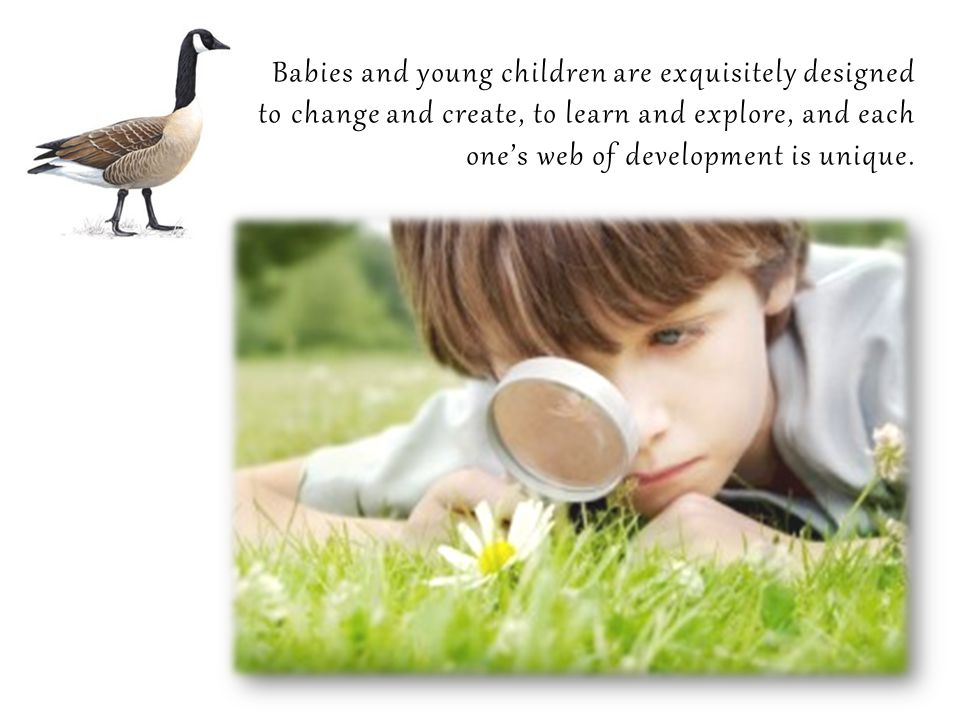 Babies and young children are exquisitely designed to change and create, to learn and explore, and each one's web of development is unique.