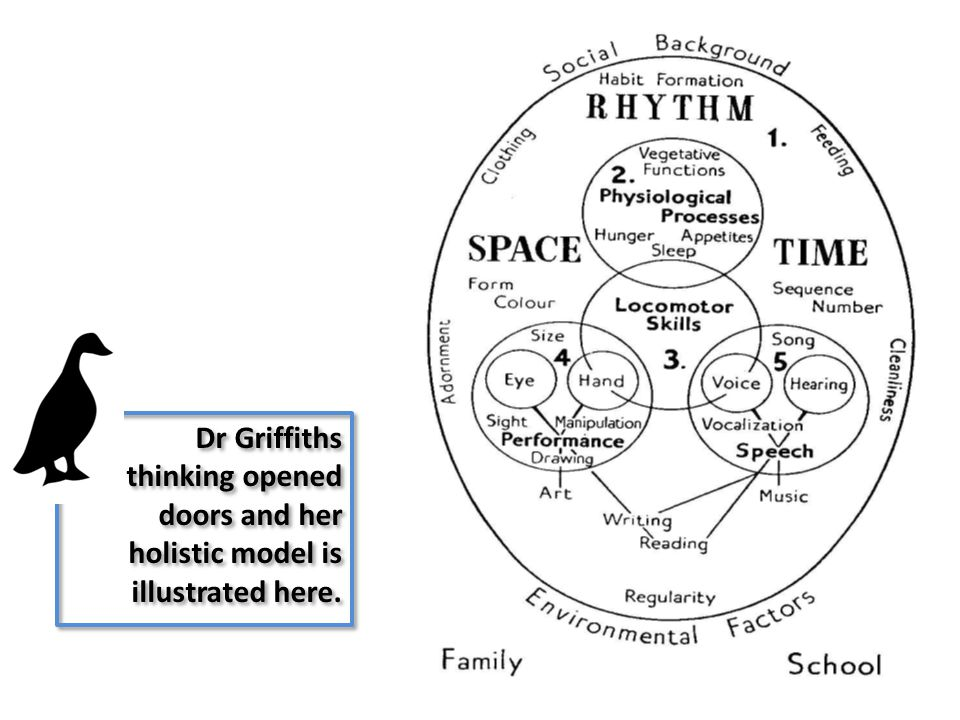 Dr Griffiths thinking opened doors and her holistic model is illustrated here.