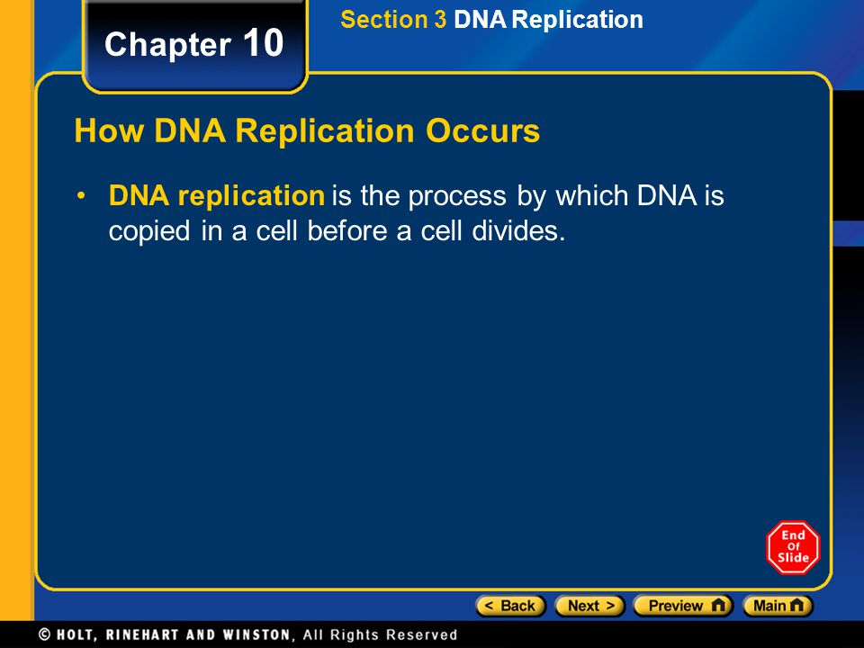 Section 3 DNA Replication Chapter 10 Objectives Summarize the process of DNA replication. Identify the role of enzymes in the replication of DNA. Desc