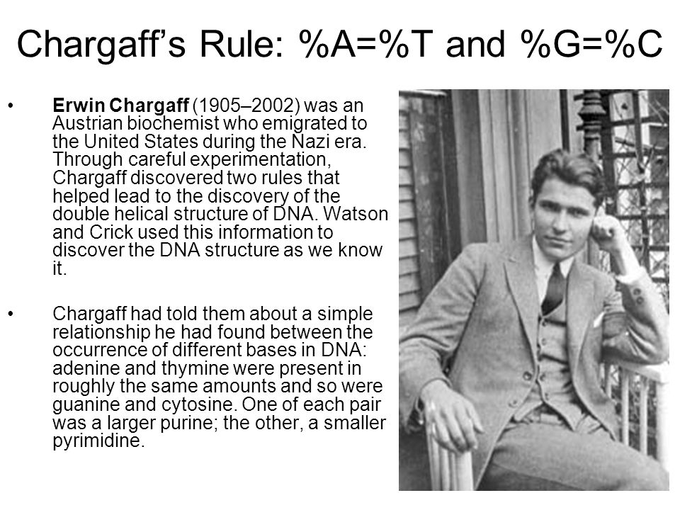 Chargaff's Rule: %A=%T and %G=%C Erwin Chargaff (1905–2002) was an Austrian biochemist who emigrated to the United States during the Nazi era. Through