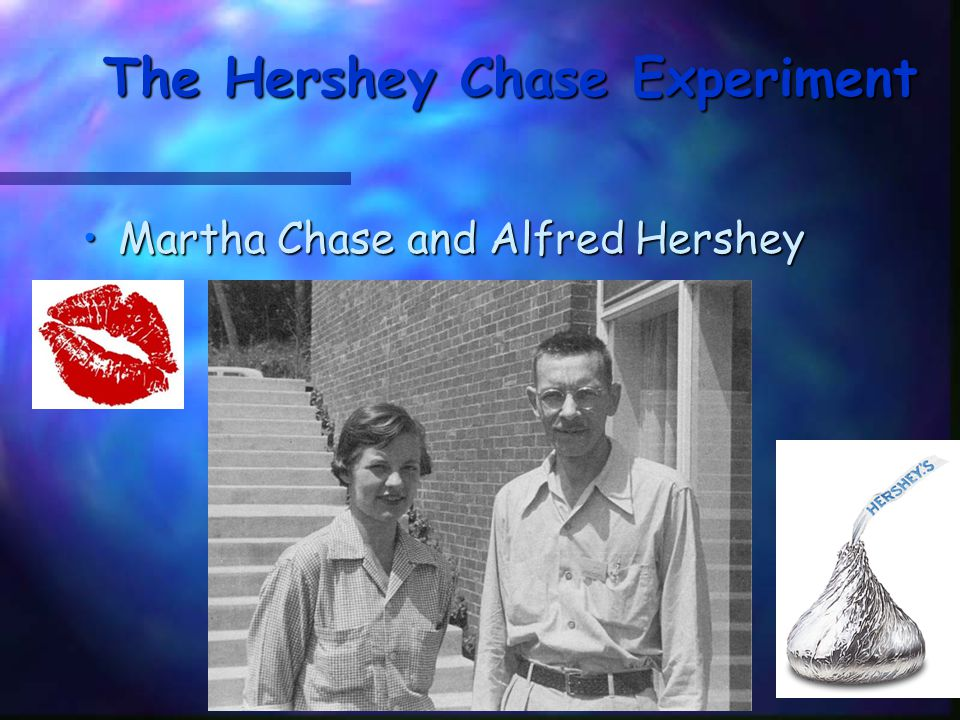 The Hershey Chase Experiment Studied viruses, nonliving particles smaller than a cell that can infect living organismsStudied viruses, nonliving particles smaller than a cell that can infect living organisms Hershey and Chase reasoned that if they could determine which part of the virus—the protein coat or the DNA core—entered the infected cell, they would learn whether genes were made of protein or DNAHershey and Chase reasoned that if they could determine which part of the virus—the protein coat or the DNA core—entered the infected cell, they would learn whether genes were made of protein or DNA They grew viruses in cultures of radioactive isotopes of phosphorus-32 (32P) and sulfur-35 (35S).They grew viruses in cultures of radioactive isotopes of phosphorus-32 (32P) and sulfur-35 (35S).