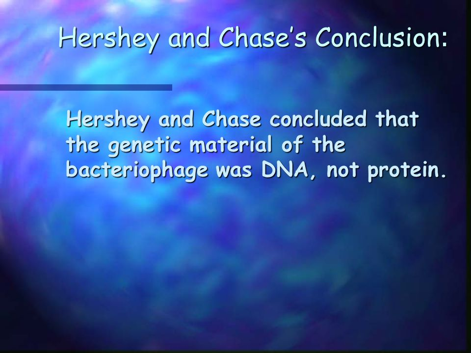 Hershey and Chase's Conclusion : Hershey and Chase concluded that the genetic material of the bacteriophage was DNA, not protein.