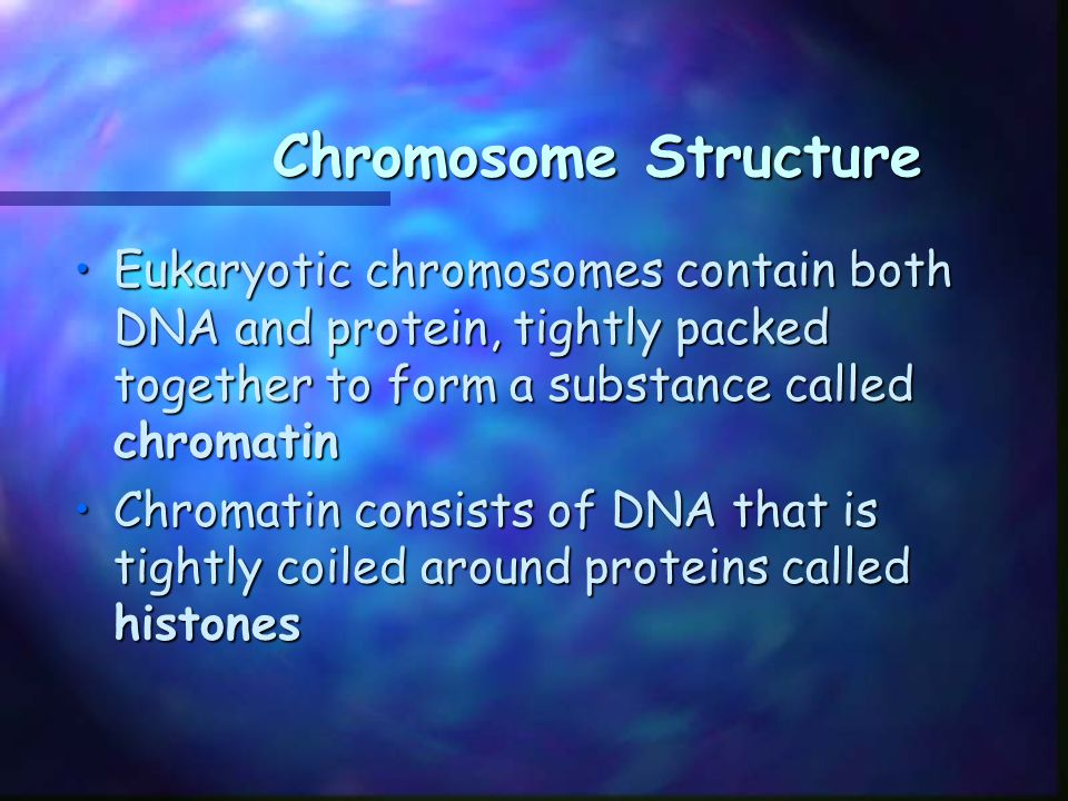 Chromosome Structure Chromosome Structure Together, the DNA and histone molecules form a beadlike structure called a nucleosomeTogether, the DNA and histone molecules form a beadlike structure called a nucleosome This allows the chromosomes to be very tightly coiled up in the nucleusThis allows the chromosomes to be very tightly coiled up in the nucleus