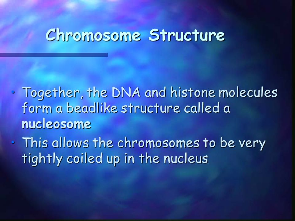 Figure 12-10 Chromosome Structure of Eukaryotes Chromosome Supercoils Coils Nucleosome Histones DNA double helix Section 12-2 Go to Section: