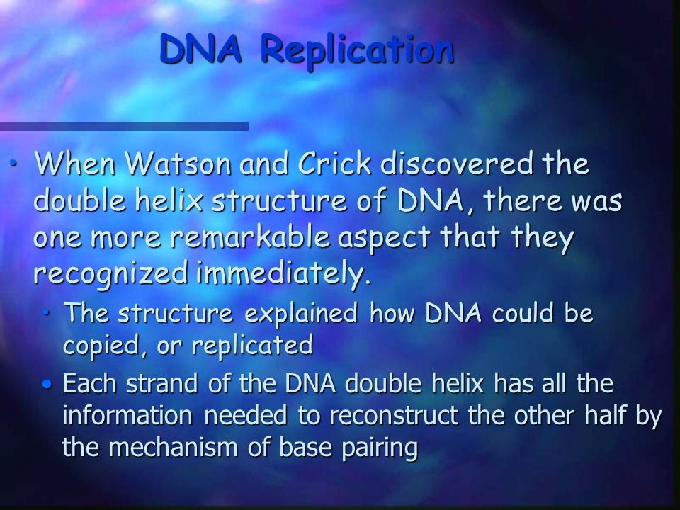 DNA Replication When Watson and Crick discovered the double helix structure of DNA, there was one more remarkable aspect that they recognized immediat