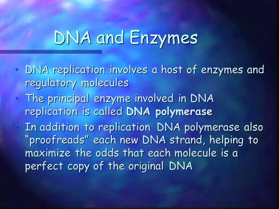 Learning Targets for Section 12.3 What are the three main types of RNA?What are the three main types of RNA.