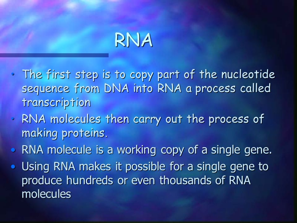 The Structure of RNA There are three main differences between RNA and DNA: 1.The sugar in RNA is ribose instead of deoxyribose 2.RNA is generally single-stranded 3.RNA contains uracil in place of thymine