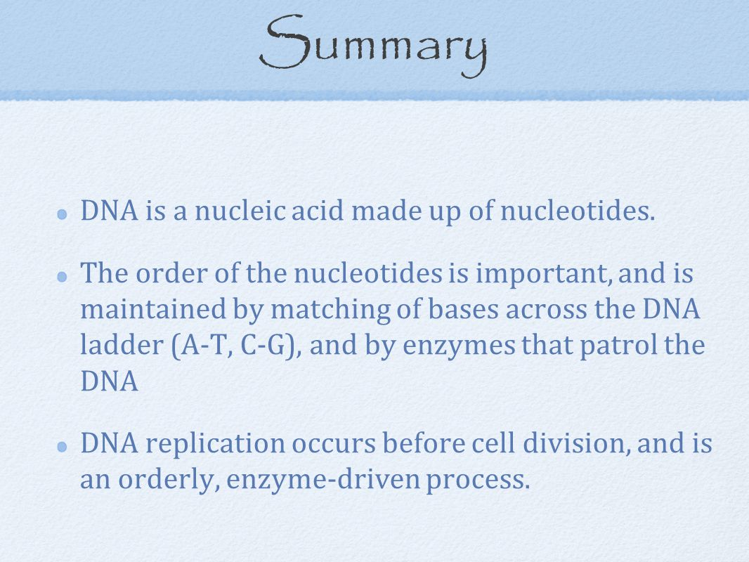 Summary DNA is a nucleic acid made up of nucleotides. The order of the nucleotides is important, and is maintained by matching of bases across the DNA