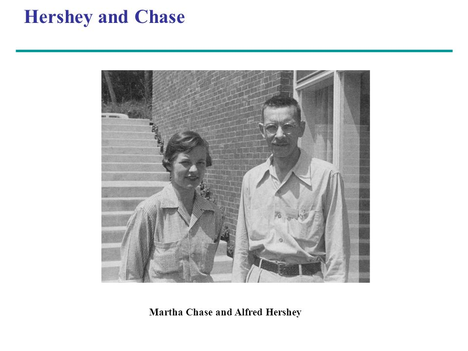 Hershey and Chase Martha Chase and Alfred Hershey