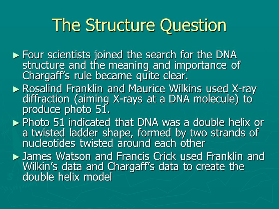 The Structure Question ► Four scientists joined the search for the DNA structure and the meaning and importance of Chargaff's rule became quite clear.