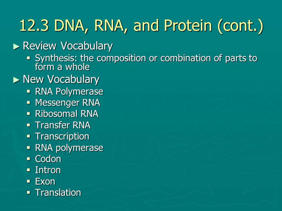 12.3 DNA, RNA, and Protein (cont.) ► Review Vocabulary  Synthesis: the composition or combination of parts to form a whole ► New Vocabulary  RNA Pol
