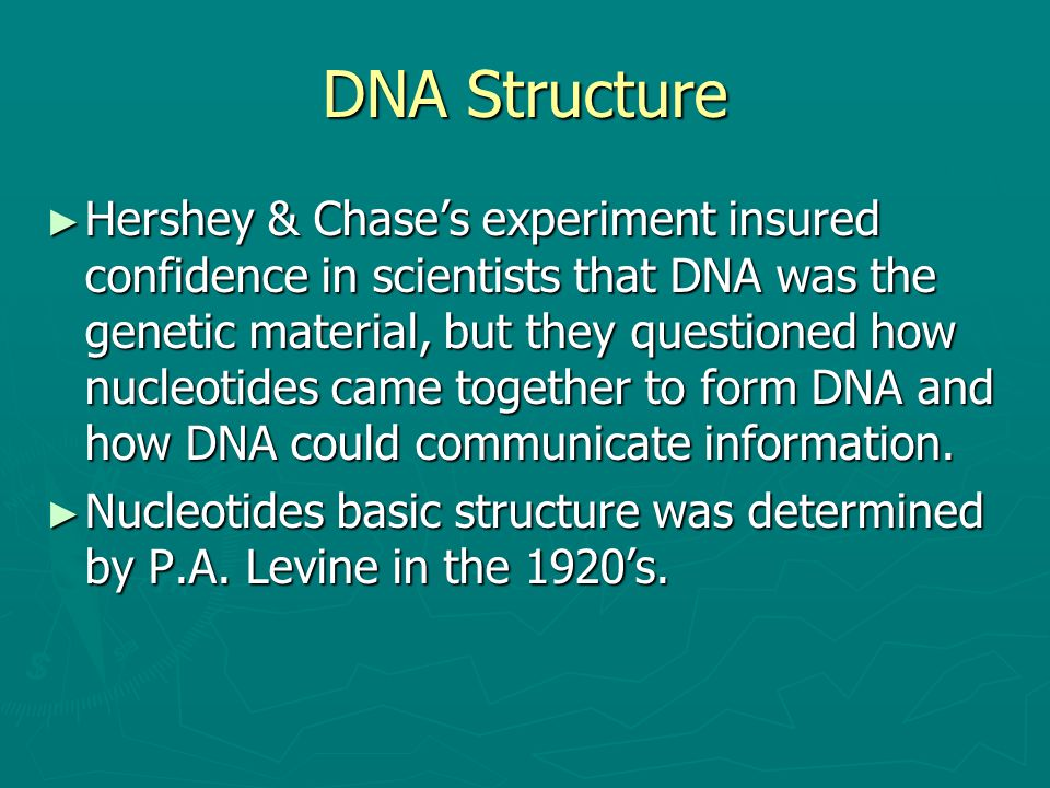 DNA Structure ► Hershey & Chase's experiment insured confidence in scientists that DNA was the genetic material, but they questioned how nucleotides c