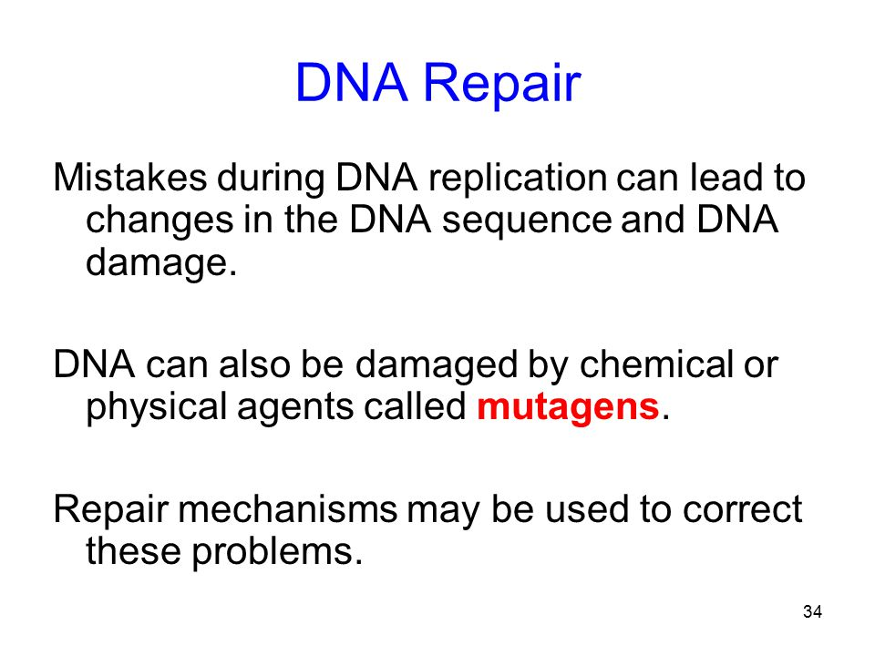 34 DNA Repair Mistakes during DNA replication can lead to changes in the DNA sequence and DNA damage.