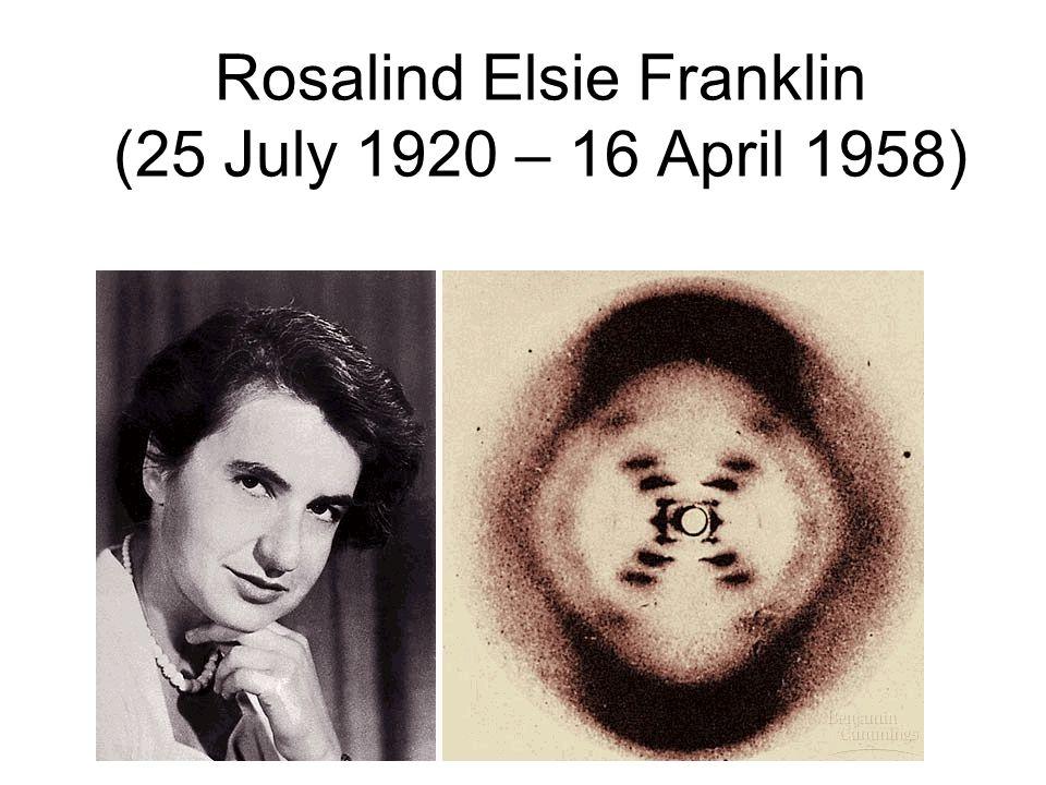 Rosalind Elsie Franklin (25 July 1920 – 16 April 1958)