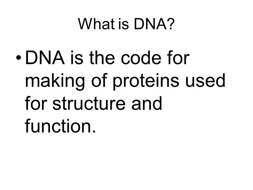 DNA polymerase 5' – A A A T T C G T 3' – T T T A A G C A A T C G A T T A C A - 3' T A A T G T - 5' ATAT TATA CGCG GCGC Leading strand Lagging strand