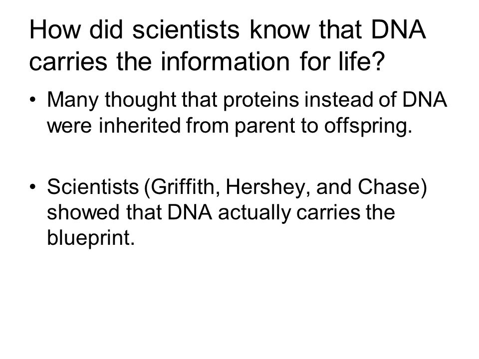 How did scientists know that DNA carries the information for life? Many thought that proteins instead of DNA were inherited from parent to offspring.
