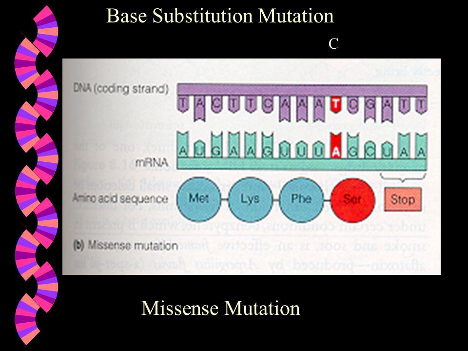 Base Substitution Mutation C Missense Mutation