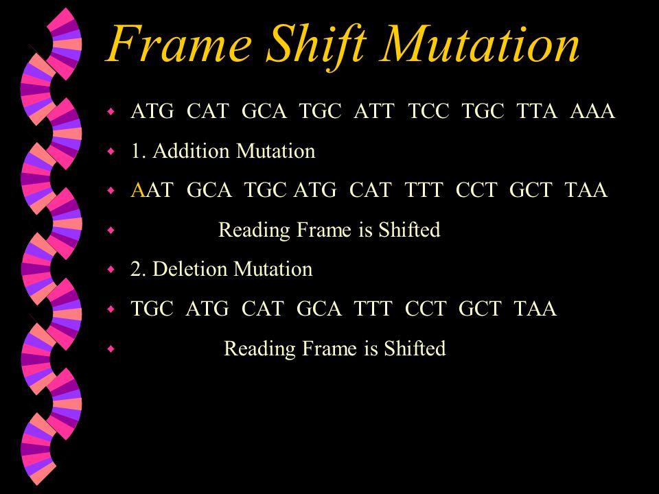 Frame Shift Mutation w ATG CAT GCA TGC ATT TCC TGC TTA AAA w 1. Addition Mutation w AAT GCA TGC ATG CAT TTT CCT GCT TAA w Reading Frame is Shifted w 2
