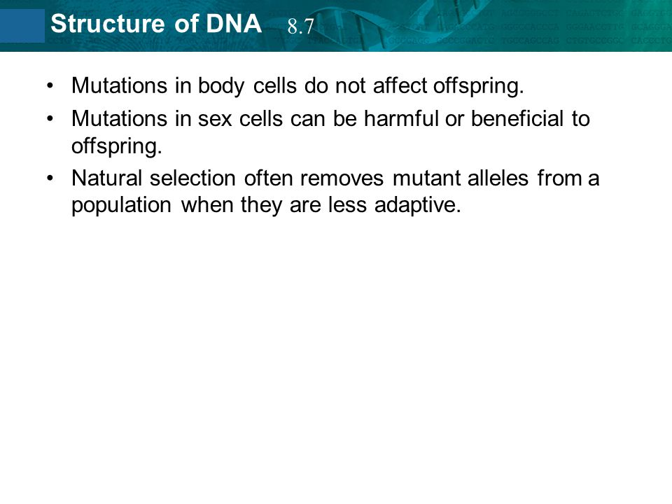 8.2 Structure of DNA Mutations in body cells do not affect offspring. Mutations in sex cells can be harmful or beneficial to offspring. Natural select