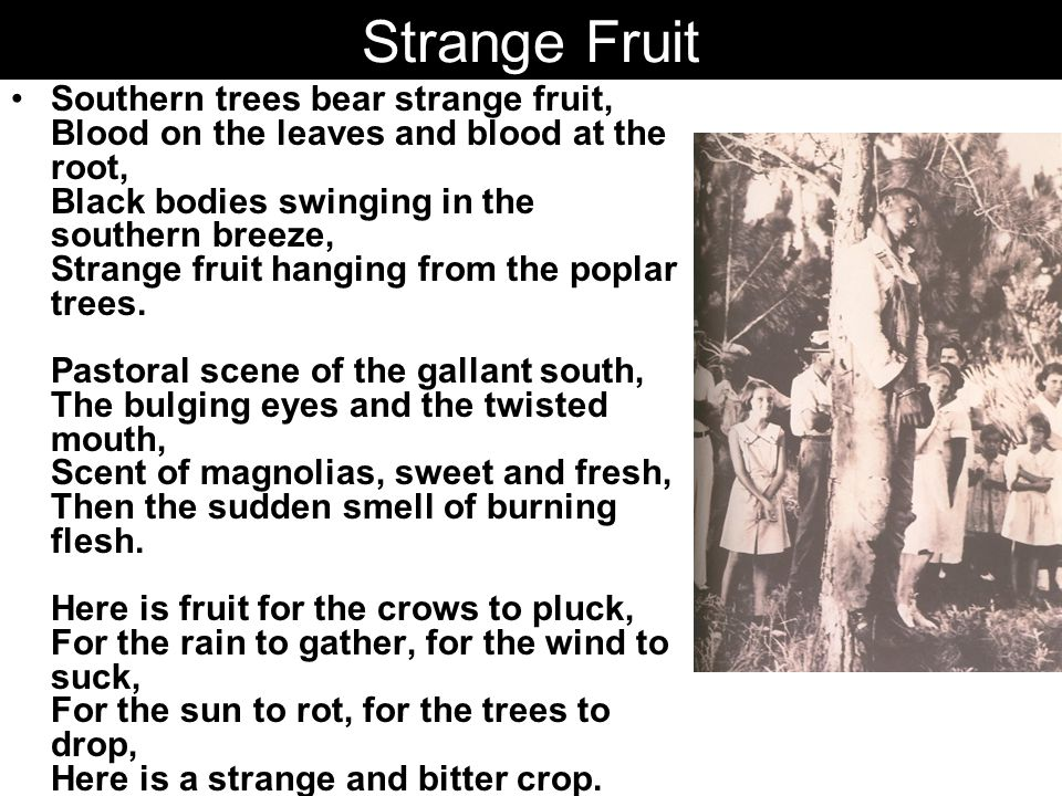 Strange Fruit Southern trees bear strange fruit, Blood on the leaves and blood at the root, Black bodies swinging in the southern breeze, Strange fruit hanging from the poplar trees.