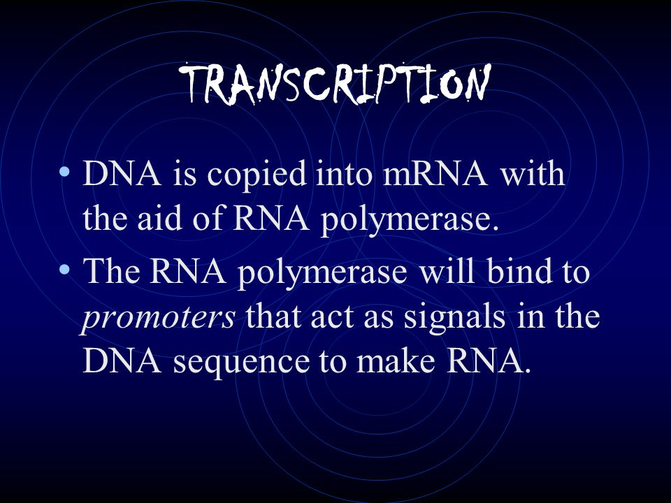 mRNA (messenger) Copies genetic code of DNA by matching bases.