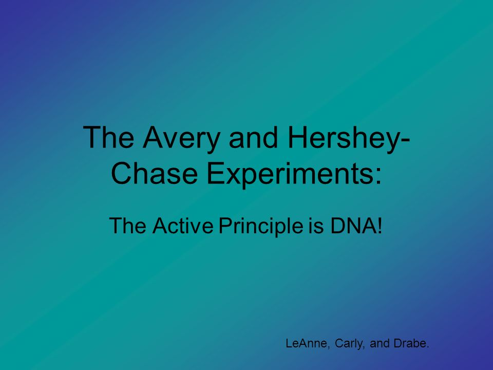 The Avery and Hershey- Chase Experiments: The Active Principle is DNA! LeAnne, Carly, and Drabe.