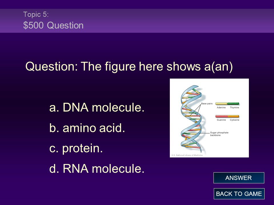 Topic 5: $500 Question Question: The figure here shows a(an) a.