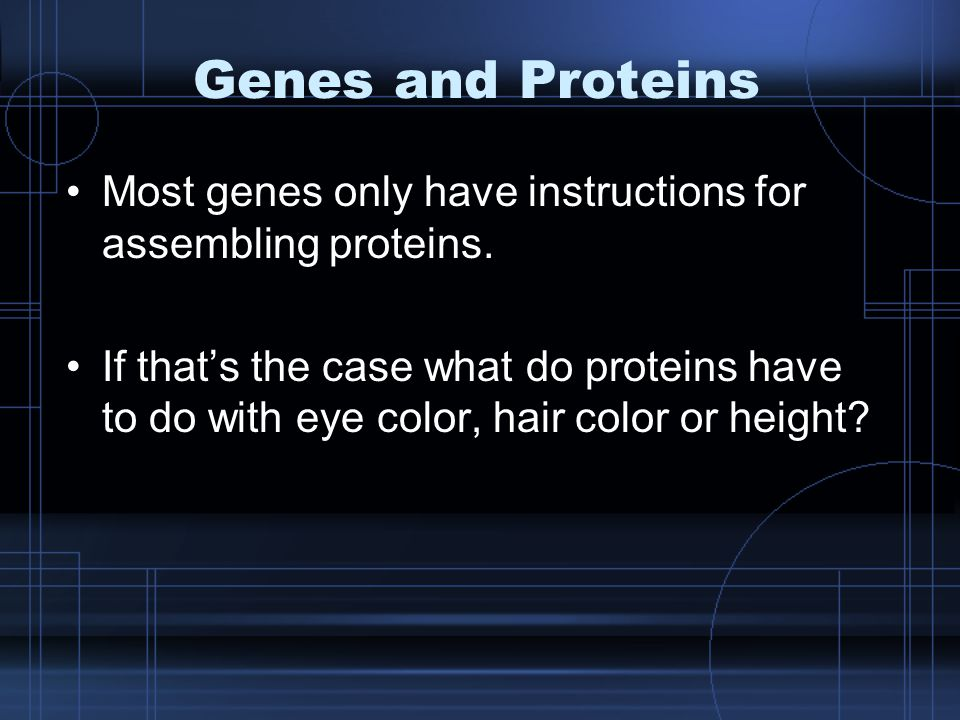 Genes and Proteins Most genes only have instructions for assembling proteins.
