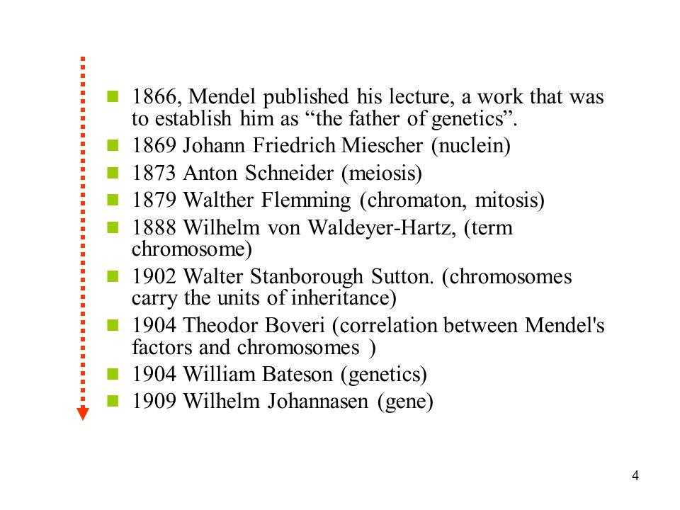 25 Laurenceau R.et al.