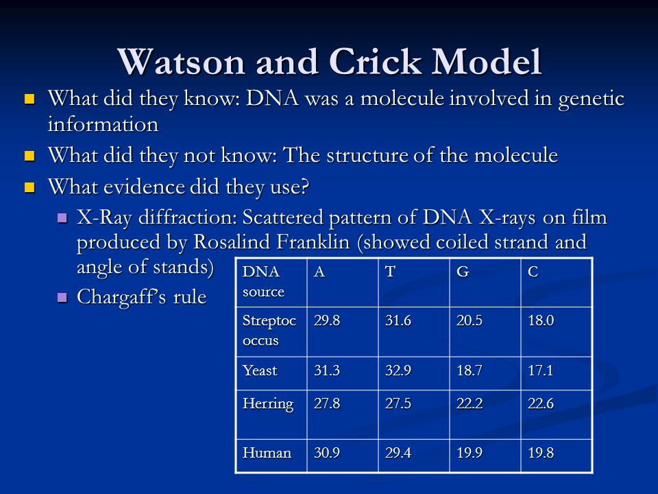 Watson and Crick Model What did they know: DNA was a molecule involved in genetic information What did they know: DNA was a molecule involved in genetic information What did they not know: The structure of the molecule What did they not know: The structure of the molecule What evidence did they use.
