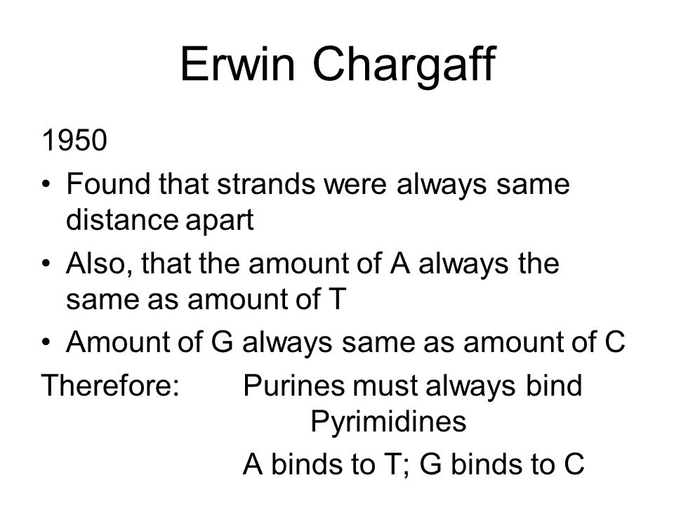 Erwin Chargaff 1950 Found that strands were always same distance apart Also, that the amount of A always the same as amount of T Amount of G always sa