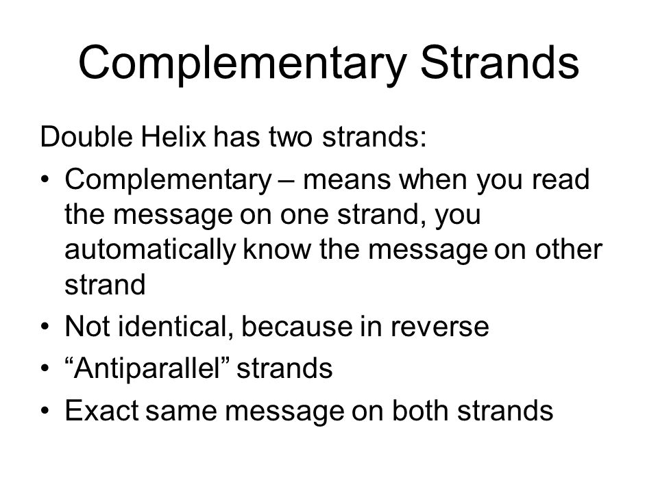 Complementary Strands Double Helix has two strands: Complementary – means when you read the message on one strand, you automatically know the message