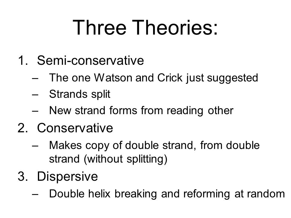 Three Theories: 1.Semi-conservative –The one Watson and Crick just suggested –Strands split –New strand forms from reading other 2.Conservative –Makes
