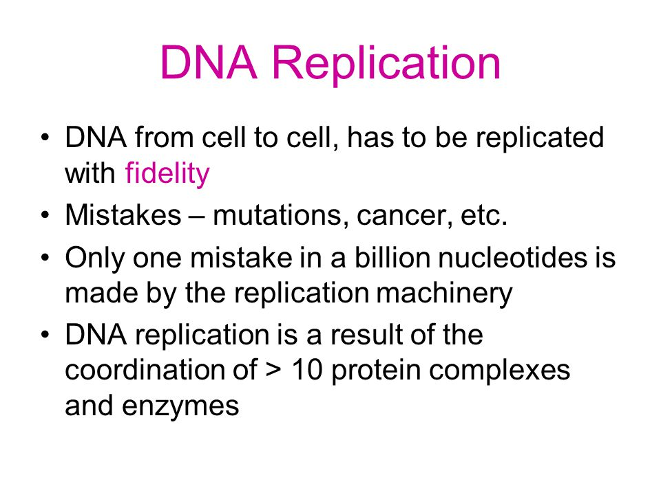 DNA Replication DNA from cell to cell, has to be replicated with fidelity Mistakes – mutations, cancer, etc. Only one mistake in a billion nucleotides