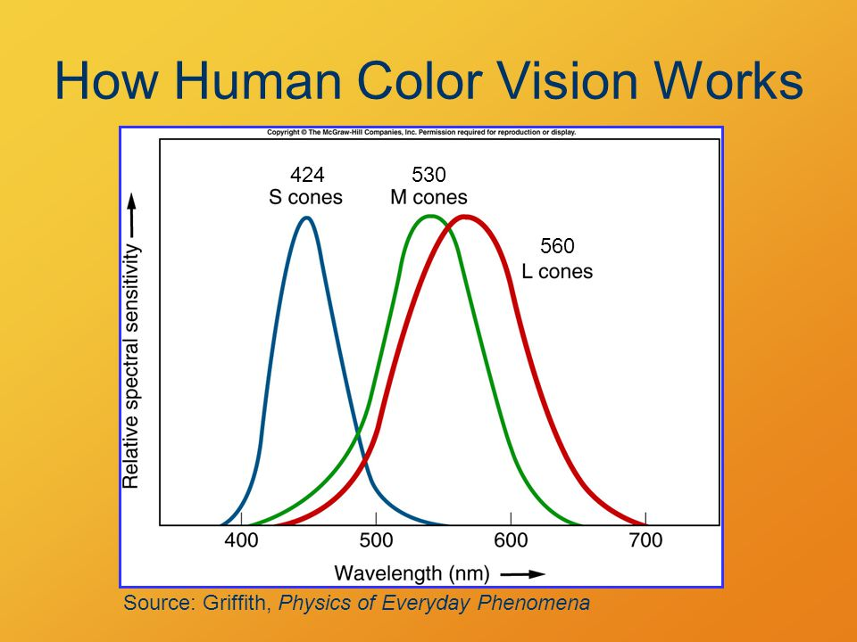 How Human Color Vision Works Source: Griffith, Physics of Everyday Phenomena 424530 560