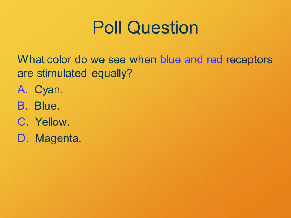 Poll Question What color do we see when blue and red receptors are stimulated equally.